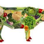 Чем можно заменить белок мяса